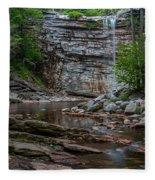 June Morning At Awosting Falls Fleece Blanket