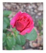 June Rose #5 Fleece Blanket