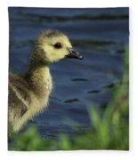 Just A Babe Fleece Blanket