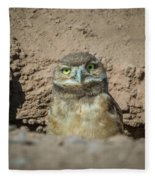 Juvenile Burrowing Owl-img_164817 Fleece Blanket
