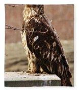 Juvenile Eagle Fleece Blanket