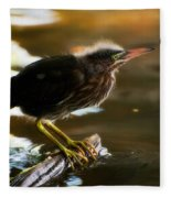 Juvenile Green Heron Fleece Blanket