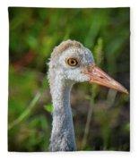 Juvenile Sandhill Crane Portrait Fleece Blanket