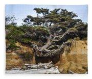 Kalaloch Hanging Tree Fleece Blanket