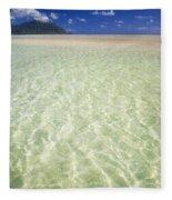 Kaneohe Sandbar Fleece Blanket