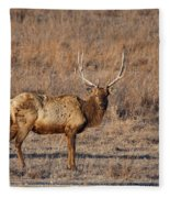 Kansas Elk Fleece Blanket