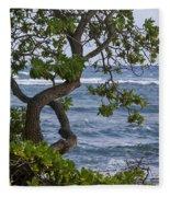 Kauai Shores Fleece Blanket