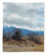 Kelso Dunes Winter Landscape Fleece Blanket