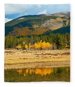 Kenosha Pass Aspens 4 Fleece Blanket
