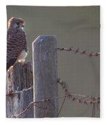 Kestrel On Rustic Fence Fleece Blanket