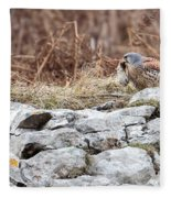 Kestrel With Prey Fleece Blanket
