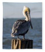 Key Largo Florida Yellow Headed Pelican Fleece Blanket