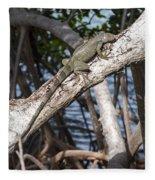 Key West Iguana In Mangrove 3 Fleece Blanket