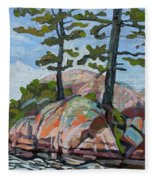 Killarney Point- The Phlip Side Fleece Blanket