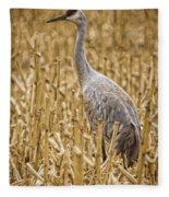 King Of The Delta Cornfield Fleece Blanket