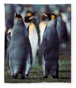 King Penguins Volunteer Point Falkland Islands Fleece Blanket