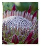 King Protea Island Flowers Jewel Of The Garden Fleece Blanket