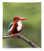Kingfisher On A Limb Fleece Blanket