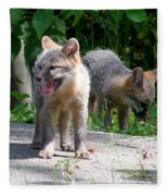 Kit Fox12 Fleece Blanket