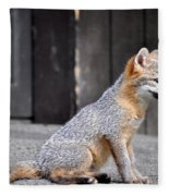 Kit Fox2 Fleece Blanket