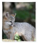 Kit Fox7 Fleece Blanket