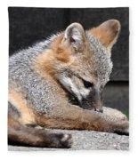 Kit Fox8 Fleece Blanket