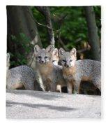 Kit Fox9 Fleece Blanket