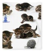 Kitten Collage Fleece Blanket