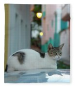 Kitten Reflections Fleece Blanket
