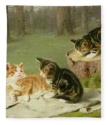 Kittens Playing Fleece Blanket