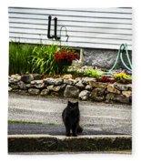 Kitty Across The Street  Fleece Blanket