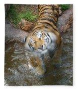 Kitty Got Wet Fleece Blanket