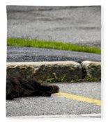 Kitty In The Street Fleece Blanket