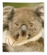 Koala Snack Fleece Blanket