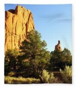 Kodachrome Basin I Fleece Blanket
