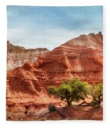 Kodachrome Park Colorful Desert Beauty In Spring. Fleece Blanket