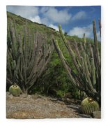 Koko Crater Cacti Fleece Blanket