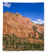 Kolob Canyon Vista Fleece Blanket