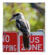 Kookaburra On A Road Sign Fleece Blanket
