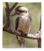 Kookaburra Sits In The Ol Gum Tree Fleece Blanket