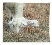 L Is For Lamb Fleece Blanket