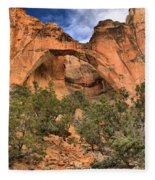 La Ventana Arch Fleece Blanket