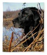 Labrador Retriever Waiting In Blind Fleece Blanket