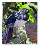 Lady Amherst's Pheasant Fleece Blanket