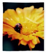 Lady Bug Walking The Line Fleece Blanket