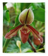 Lady Slipper Fleece Blanket
