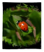 Ladybug With Swirly Framing Fleece Blanket
