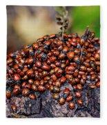 Ladybugs On Branch Fleece Blanket