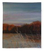Quiet Lake Morning At Lake Dunn Village Creek State Park Ar Fleece Blanket
