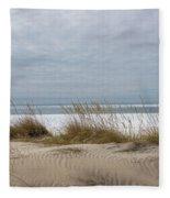 Lake Erie Sand Dunes Dry Grass And Ice Fleece Blanket